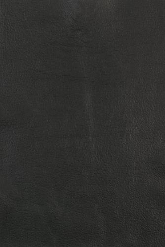 10 Antártica negro 4039